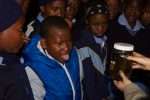Learners intrigued by what bats actually look like up close